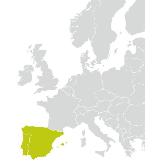 Länder/Zulassungen EURO 4000