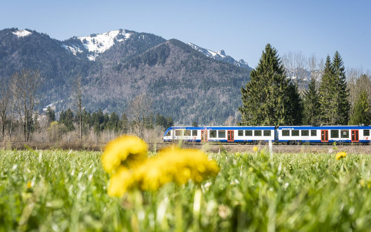 Alpha Trains acquires multiple units for Oberland network in Bavaria